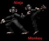 Ninja~Monkey