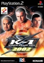 K-1 World Grand Prix on PS2 - Gamewise