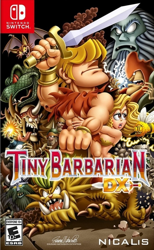 Tiny Barbarian DX for NS Walkthrough, FAQs and Guide on Gamewise.co