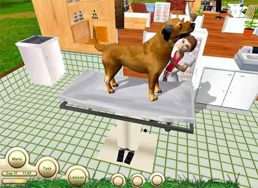 Paws and Claws: Pet Vet
