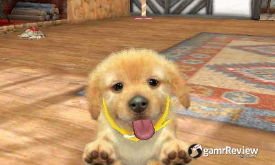 how to make money in nintendogs and cats
