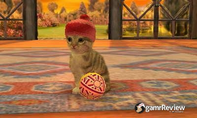 How To Get Money On Nintendogs And Cats